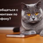 Как общаться с пациентами по телефону?